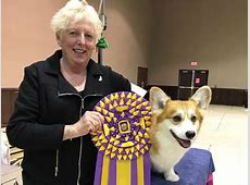 best in show 2020 dogs