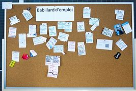 Image result for ababillarsd