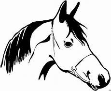 Malvorlagen Pferdekopf Kostenlos Pferdekopf Skizziert Ausmalbild Malvorlage Pferde