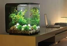 aquarium colonne pas cher acheter des colonnes aquariums 224 prix pas cher