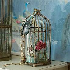 decoration interieur cagne chic swansong willows via collections cage oiseaux