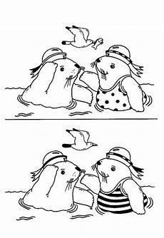 Lustige Malvorlagen Quiz Lustige Seehunde