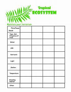 collection of ecosystems for kids worksheets sharebrowse przyroda pinterest worksheets