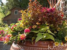 color inspiration for container gardens le jardinet