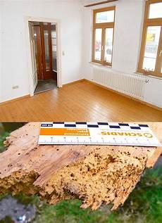 altbau fußboden sanieren bausachverst 228 ndiger f 252 r bau und bestandsimmobilien in