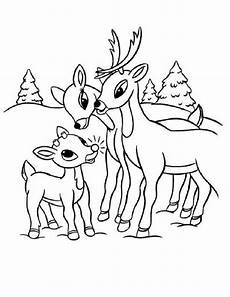 coloring pages of reindeer coloring home