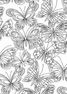 booktopia perfect patterns colouring book by hinkler
