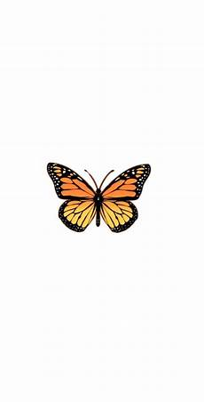Orange Butterfly Wallpaper Vsco