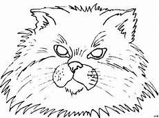 Malvorlagen Katzenkopf Katzenkopf Viele Haare Ausmalbild Malvorlage Katzen
