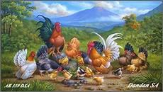 Lukisan Ayam Kate Yang Oke Album Koleksi Lukisan Dandan Sa