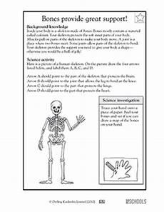 science worksheets human skeleton 12216 3rd grade 4th grade science worksheets bones provide great support greatschools