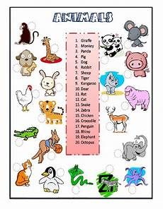 animals worksheets for primary 13865 animals the animals worksheet