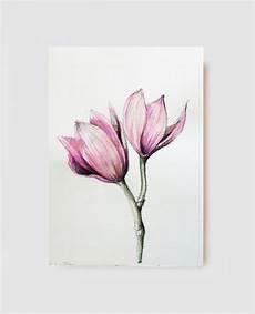 disegni di fiori a matita habrumalas orchids drawings images