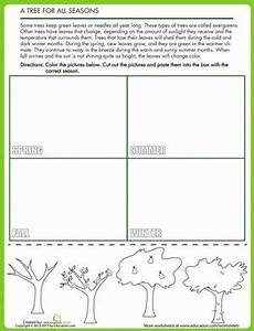 four seasons worksheets for grade 2 14879 10 images about weather on gardens trees and four seasons