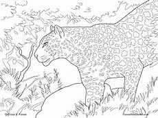 coloring pages animals in the forest 17029 crista forest s animals 9 1 12 10 1 12