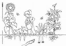 Ausmalbilder Kostenlos Zum Ausdrucken Garten Garten Gartenarbeit Gem 252 Se Gartenarbeit Schulideen Natur