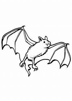 Fledermaus Malvorlage Pdf Fledermaus Malen Suche Ausmalbilder