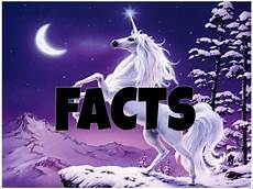 why don t we unicorns today this ballsy facts about unicorns can you believe it