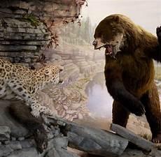 sur la terre des jaguars 970 best prehistoric america images on