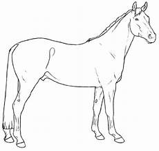 breeds coloring pages di 2020
