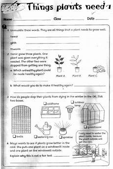 science worksheets about plants for grade 1 12109 the city school grade 3 science reinforcement worksheets