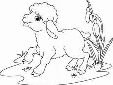 Ausmalbilder Ostern Lamm Ausdrucken Und Ausmalen Newtemp