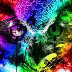 Neon Owl Wallpaper