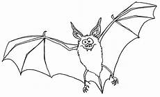Fledermaus Malvorlage Pdf Wuschels Malvorlagen Seite 2
