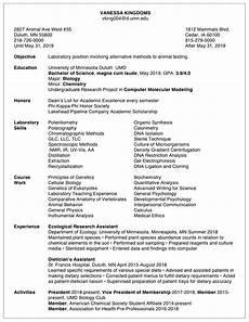 resume exles career internship services umn duluth
