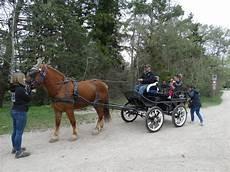 cavallo con carrozza slitta trainata da cavalli giro in carrozza sulla neve