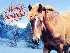 frohe weihnachten pferd