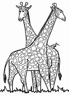 kostenlose druckbare giraffe malvorlagen f 252 r kinder