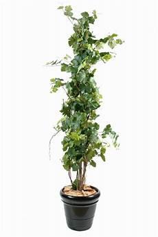 arbre fruitier intérieur arbre artificiel fruitier vigne plante pour int 233 rieur