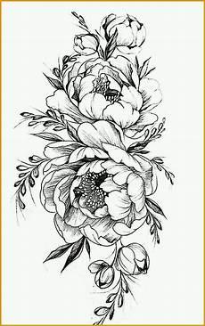 Blumen Malvorlagen Kostenlos Bearbeiten Selten Blumen Zeichnen Vorlagen Editierbar Malvorlagen