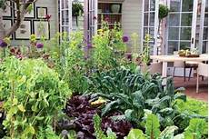 Kitchen Garden A To Z by Easy Kitchen Garden Step By Step Earth News