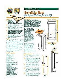 plans for building a bat house medium four chamber bat box plan pdf picture bat house