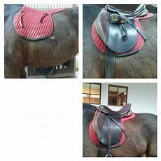 Malvorlage Pferd Mit Sattel Pferd Richtig Satteln Mit Bilder Pferde Reiten Sattel