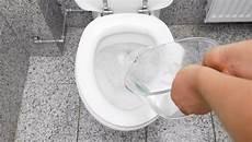spülmittel in toilette 8 geheime tricks f 252 r den besuch auf der toilette