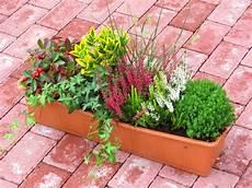 Bepflanzter Blumenkasten 60 Cm Wintergr 252 N Bunt Pflanzen