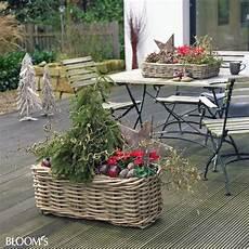 Balkonkasten Herbst Winter - 44 besten herbst winterdeko auf dem balkon bilder auf