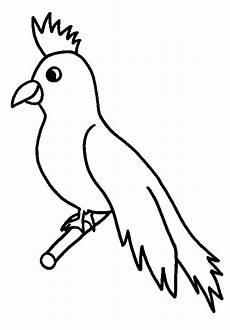 vogel auf ast 4 ausmalbild malvorlage v 246 gel