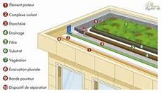 toit terrasse vegetal toiture vegetalisee architecture toiture v 233 g 233 talis 233 e