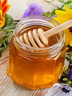 beste honig in deutschland bienensterben durch massenhaltung so qualvoll sterben