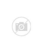 Monica Vanali