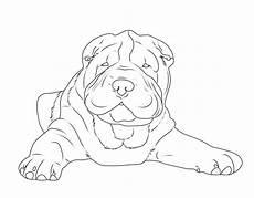 malvorlagen hunde quiz kostenlose malvorlage hunde shar pei zum ausmalen