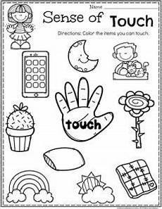 five sense worksheet kindergarten 12646 5 senses five senses preschool five senses kindergarten senses preschool