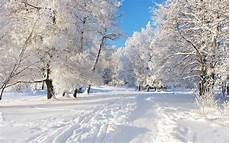 Winter Wallpaper Wallpaper