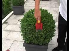 Egrola Buchsbaum Kugelschnitt Schablonen 2011 Garden