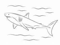 Malvorlage Hai Einfach Ausmalbild Wei 223 Er Hai Ausmalbilder Kostenlos Zum Ausdrucken