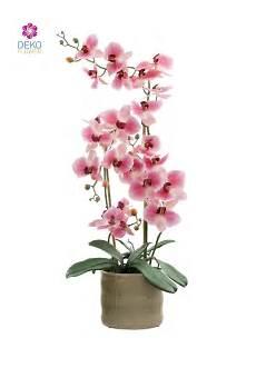Kunst Orchidee Im Topf - k 252 nstliche orchidee rosa 70 cm in keramik topf